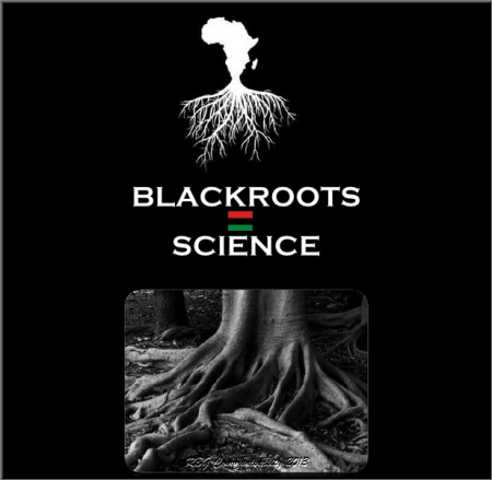 rbg blk roots science