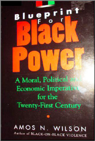Economics and afrikan nationalism dr amos wilson blueprint for rbg blueprint for black power interactive the nationhood series malvernweather Gallery