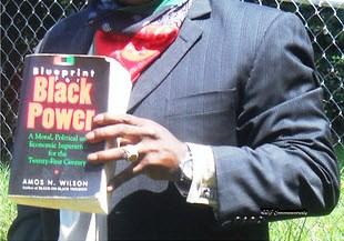 Economics and afrikan nationalism dr amos wilson blueprint for rbg blueprint malvernweather Gallery