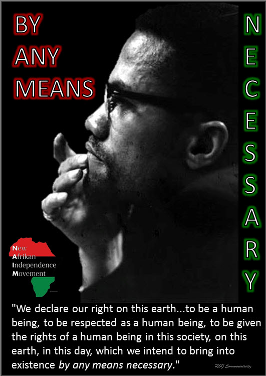 malcolm x message to the grassroots pdf