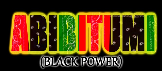 afrikan-insurrektion-muzik-a-i-m-33